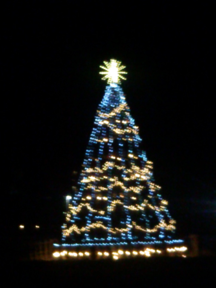 Barrel Christmas Tree